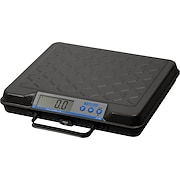 Salter Brecknell 250-lb. Electronic Utility Scales