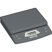 Salter Brecknell Digital Scales